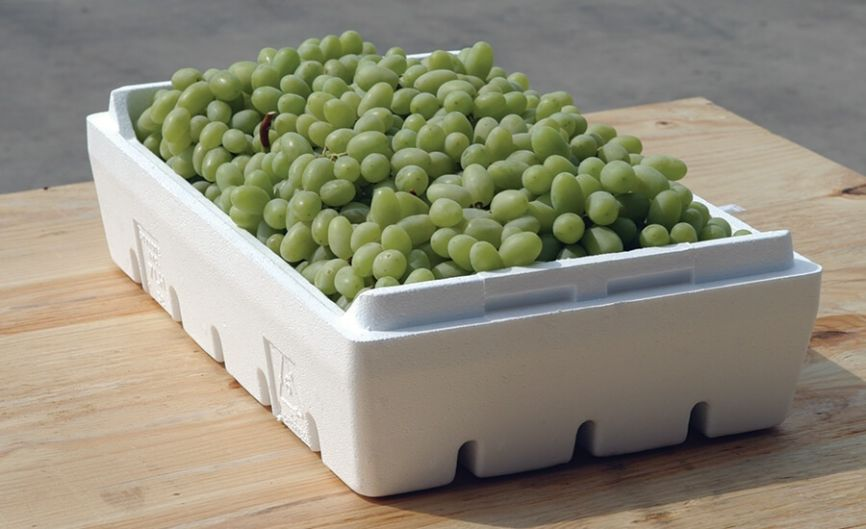 Vegetable and Fruit Box of Expandable Polystyrene.